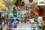 Fonds de commerce Fleuriste avec concession Interflora